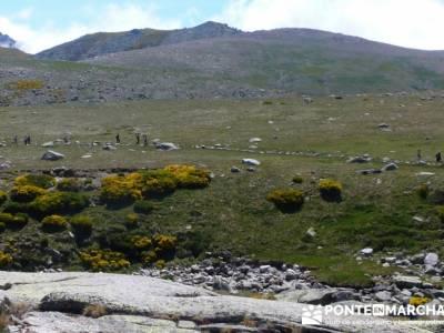 Parque Regional Sierra de Gredos - Laguna Grande de Gredos;grupos de montaña madrid;rutas por madri